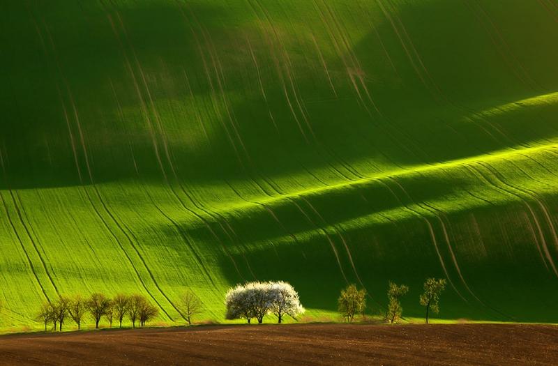 landscape-photography-10-large