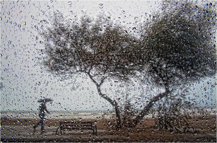 """""""Dört Mevsim Samsun"""" Fotoğraf Yarışması – Samsun'da Kış Sonuçlandı"""