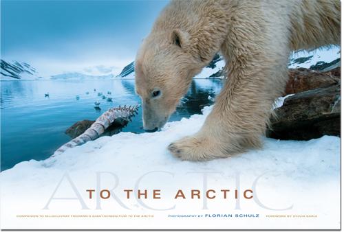Mükemmel Kutup Ayısı Fotoğrafının Kamera Arkası [To The Arctic]