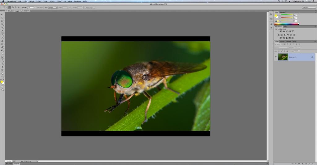 Photoshop İle Fotoğrafların Çözünürlüklerini Değiştirmek