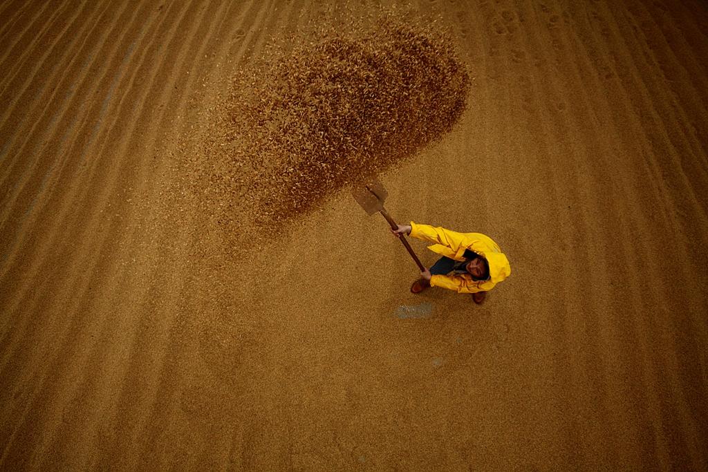 """4.Ulusal """"Keşan'da Tarım ve Tarım İnsanı"""" Konulu Fotoğraf Yarışması Sona Erdi"""