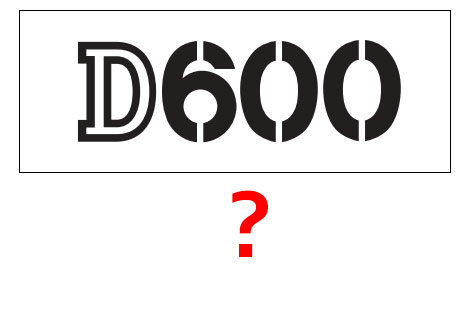 Nikon D600 Hangi Görüntü Boyutlarını Destekleyecek?