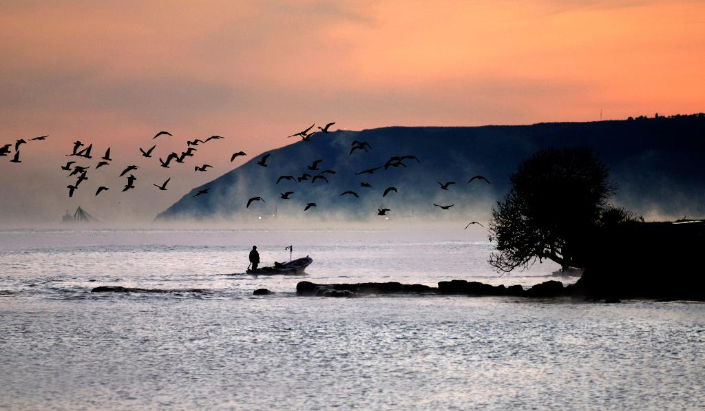 1. Sinop Ulusal Dört Mevsim Fotoğraf Yarışması Sona Erdi