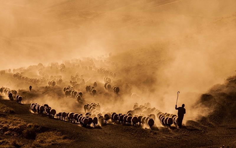 Arbella 2. Uluslararası Fotoğraf Yarışması Sona Erdi