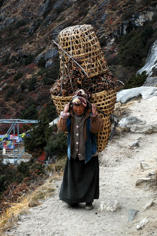 gezi-nepal-DSC_0804