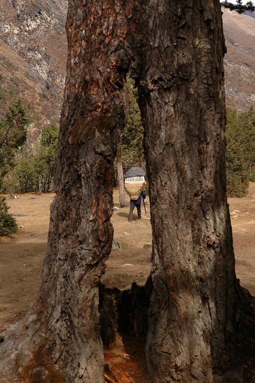 gezi-nepal-DSC_0815