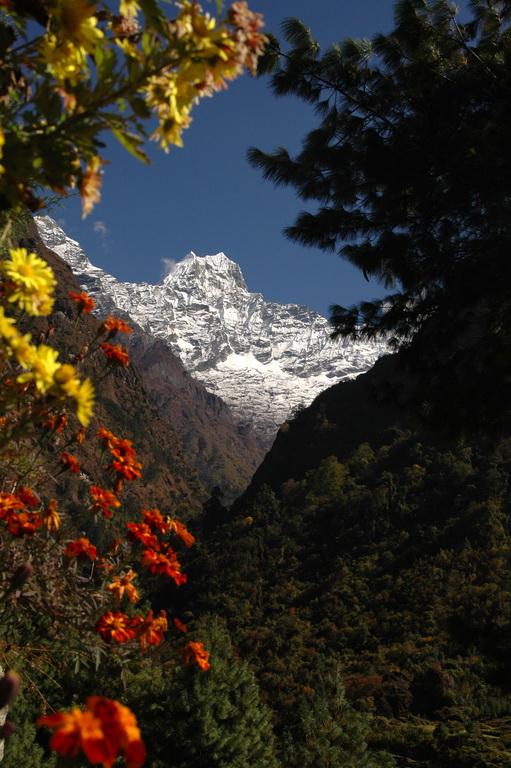 gezi-nepal-DSC_1322