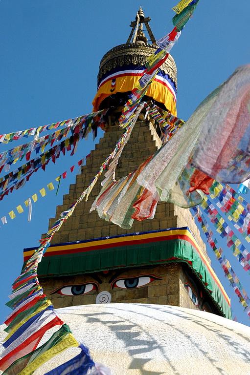 gezi-nepal-DSC_1497