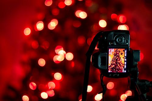 Nikon D3100 Dijital SLR ile Çekilmiş En Güzel Fotoğraflar
