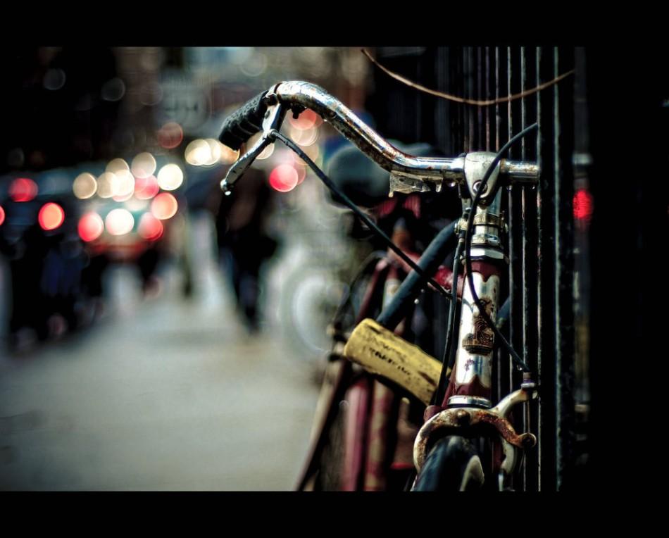 Nikon 50mm f/1.8 G ile Çekilmiş En İyi Fotoğraflar