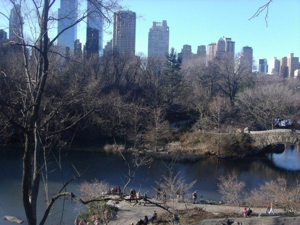 gezi fotoğrafçılığı new york