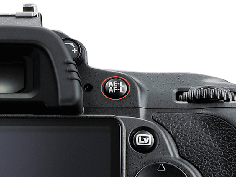 Nikon AE-L ve AF-L Düğmesi