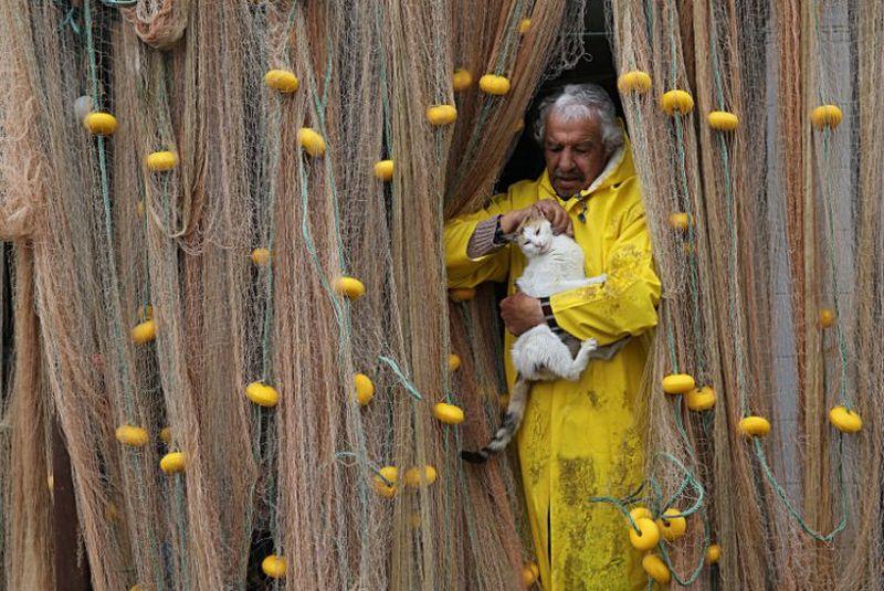 vakif-emeklilik-sari-kareler-fotograf-yarismasi-sonuclari_03