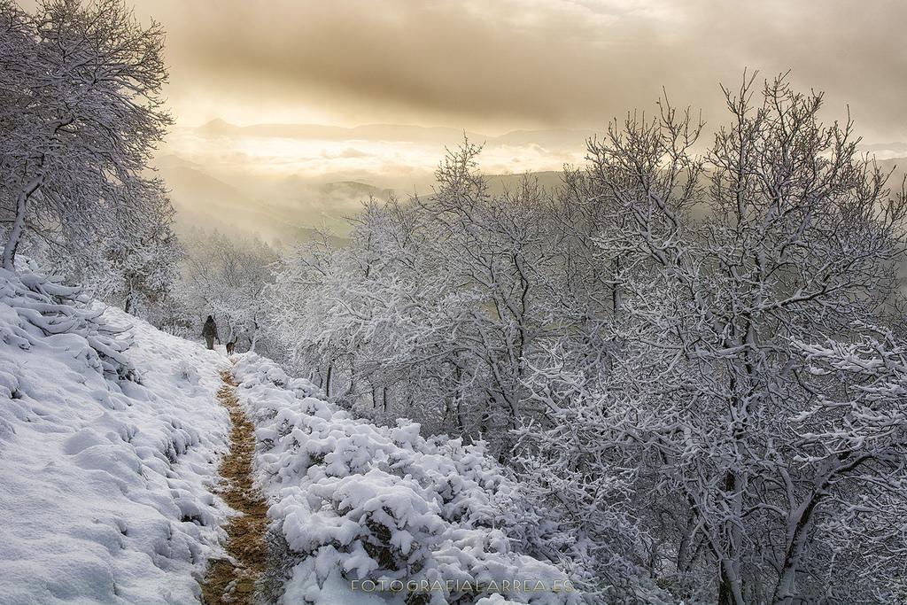 Kar Fotoğrafları için Mükemmel Örnekler