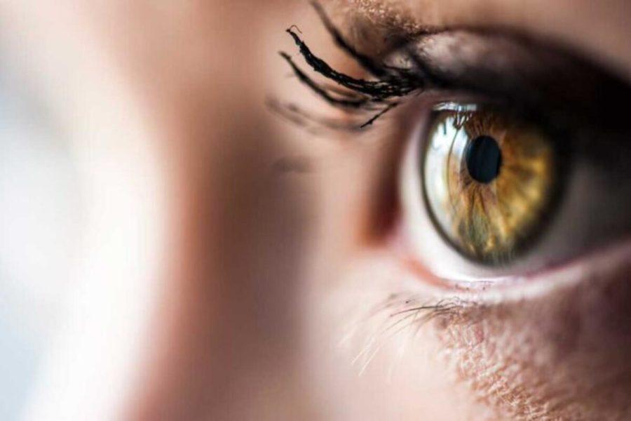 """Çağın Göz Hastanesi 10. Fotoğraf Yarışması – """"Dönüşüm"""""""